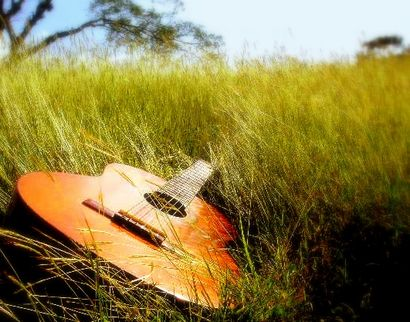 guitar_in_grass